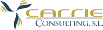 carrie consulting s.l. logo